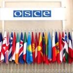 الدول أعضاء منظمة الامن والتعاون في أوروبا تدين حادث سيناء الإرهابي